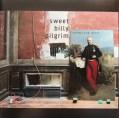 Sweet Billy Pilgrim Crown and Treaty Album cover