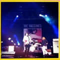 The Vaccines at The Isle of Wight Festival