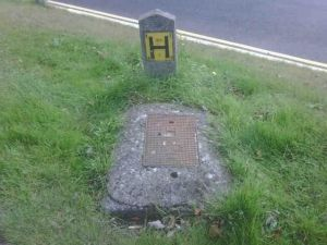 H From Steps: RIP(With thanks to Popbitch for the original joke)
