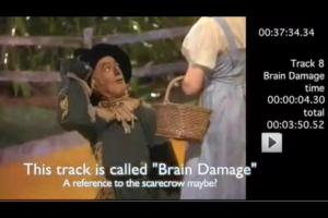 "Brain damage? - ""if I only had a brain"""