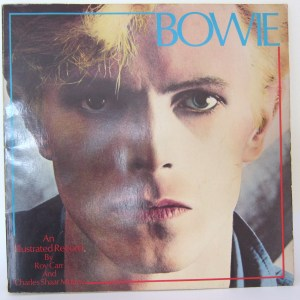 Bowie an illustrated record