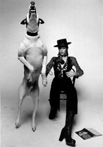 Diamond Dogs Bowie