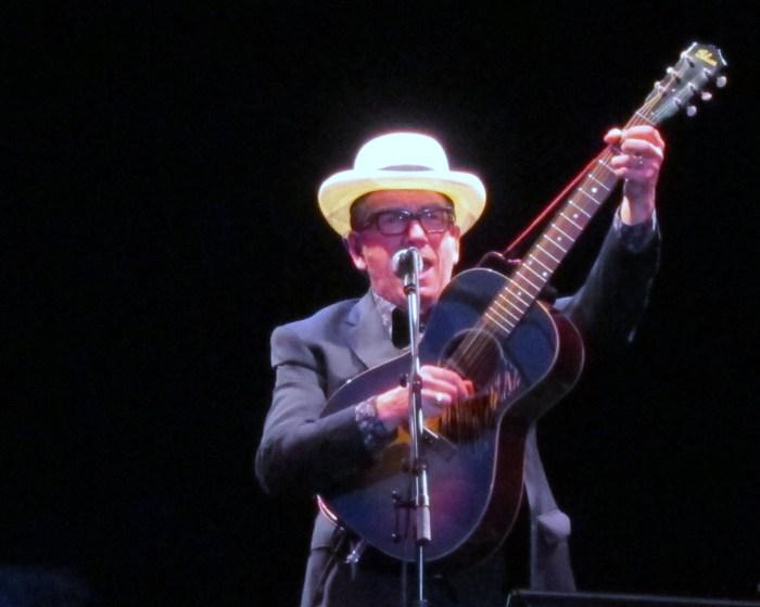 Elvis Costello Kew Gardens 2014 IMG_2018